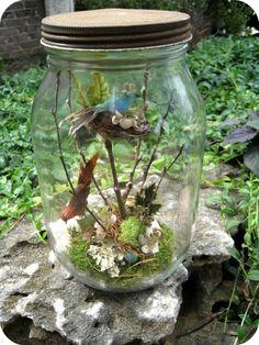 Bird scene in a jar. by abigailblues
