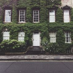 via * wit + delight - my dream is to live in an ivy covered building