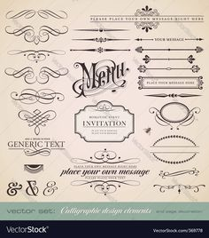 Vector Set Calligraphic Design Elements And Page Decoration