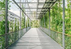 MFO Park in Oerlikon Zürich, Fotografie, Architekturfotografie