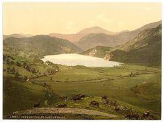 Gwynant Valley