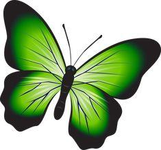 Imagini pentru fluturi verzi