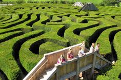 Longleat Hedge Maze, Wiltshire via Photography of England FB