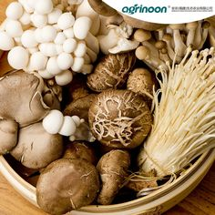 Want to grow your own mushrooms at home? We've found some of the best kits available today to produce your own delicious harvests that will tantalize your taste buds - no foraging required! Read more and find the one that's best for you! Dried Mushrooms, How To Cook Mushrooms, Stuffed Mushrooms, Edible Mushrooms, Health Benefits Of Mushrooms, Mushroom Benefits, Thanksgiving Casserole, Mushroom Varieties, Amigurumi