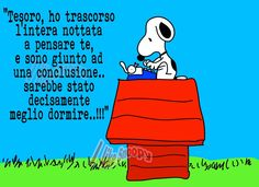 Snoopy: la notte porta consiglio...........................The night brings advice