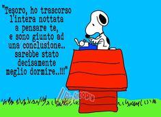 Snoopy: la notte porta consiglio...........................The night brings advice