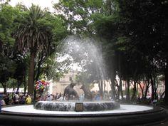 La fuente de los Coyotes de Coyoacán es un símbolo tanto del Jardín Centenario, como de Coyoacán. se encuentran caminando derecho, pasando los arcos.