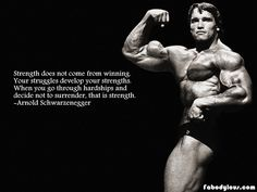 arnold schwarzenegger motivation - Google Search