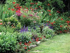 This robust perennial flower garden has a small stone border separating it from the manicured lawn. Tall spikes of salvia called Red Hot Mama add dimension to the bed, while the low-growing Blue Bedder salvia – the deep purple flowers – is a great choice for perennial borders.