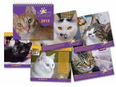 """Instituições de proteção ao animais lançam calendários 2014 para arrecadar fundos. As folhinhas custam entre 8 e R$ 30 e podem ser compradas online. Estampadas com cães e gatos elas agradam a todos e são uma opção para presentear no Natal. Alguns calendários além dos animais contam também com a participação de celebridades. A folhinha...<br /><a class=""""more-link""""…"""