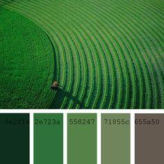 Paletas de color #verde: la fotografía de #YannArthusBertrand #green