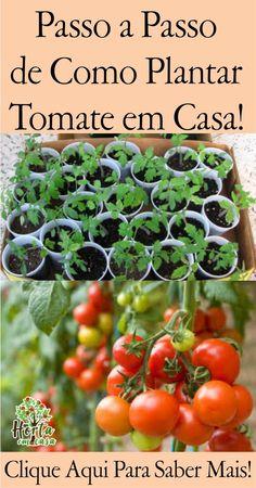 Eco Garden, Garden Beds, Garden Plants, Growing Tomatoes Indoors, Gutter Garden, Bamboo Design, Garden Inspiration, Vegetable Garden, Gardening Tips