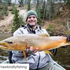 """mangledfly: """" #Repost @hawkinsflyfishing ・・・ Todd P. scores a whopper of a trout on opening weekend. Todd was fishing with Ed McCoy. Great fish Todd! #Flyfishing #streamerjunkie #sonargetdown..."""