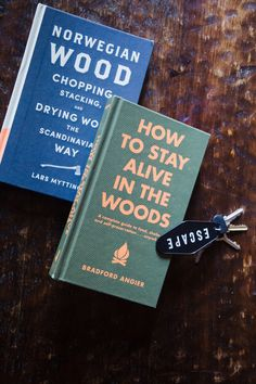 Two Pines: A Lake Tahoe A-Frame