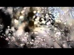 Gilbert O' Sullivan- Alone Again (Naturally)  Can't listen