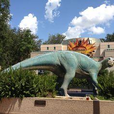 Dinosours at Animal Kingdom