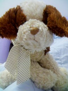 """LOST in São Caetano do Sul, Brazil Hi, I lost my teddy bear, please can u help me?? His name is """"Chocolate"""" and he's lost since august of last year (2013) . He disappeared mysteriously leaving only a short letter in my bed (where he used to stay) - i have good reasons to think he was kidnapped. Please i really need a help to beg to the robbers to bring him back . He is from São Caetano do Sul, Brazil.This is a photo of him: Best regards, Gabi. https://www.facebook.com/gabi.pimentel.9"""