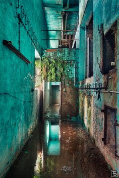 Urbex, Urban Exploration, Industrial Exploration, Life after People, Abandoned History. Abandoned Buildings, Abandoned Places, Abandoned Film, Abandoned Asylums, Beautiful Ruins, Beautiful Places, Beautiful Pictures, Ps Wallpaper, Urban Exploration
