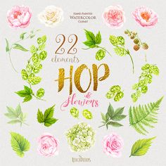 Wedding Watercolor Clipart Hop Peonies flowers Fern by ReachDreams