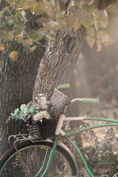 Love these bikes with flower baskets