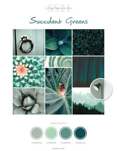 Colour Story, Color Stories, 21st Decorations, Latest Colour, World Of Color, Color Swatches, Spring Colors, Pantone Color, Wall Colors