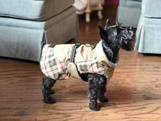 As the temperature continues to drop make sure your pups are all bundled up with sweaters from WGB Cashiers.