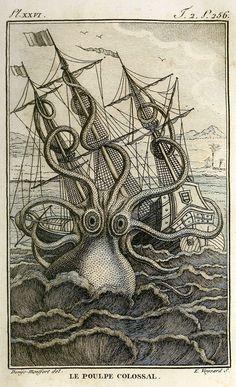 Histoire naturelle, générale et particuliere, des mollusques, animaux sans vertèbres et a sang blanc. Felix de Roissy and Pierre Denys de Montfort, 1805