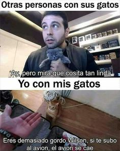 Read Tipico from the story Memes 2 by amandagnge with reads. Memes Humor, Cat Memes, Funny Jokes, Hilarious, Funny Spanish Memes, Spanish Humor, Funny Images, Funny Pictures, Youtubers
