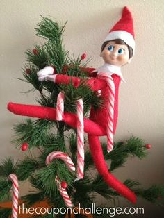 Best view in the house!  Let your Elf be your tree topper one night.  Do you think the kids will notice immediately?
