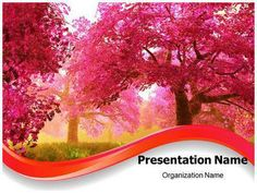 Make a professional-looking PPT presentation on topics related to nature with our Beautiful #cherry #blossom PowerPoint template quickly and #affordably. Download Beautiful cherry blossom editable #ppt template now at affordable rate and get started. Our royalty #free #Beautiful cherry blossom #Powerpoint #template could be used very effectively for #nature, #cherry, blossom, cherry blossoms and related PowerPoint #presentations.