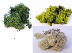 Dried Artificial Reindeer Moss Lining Craft Flower Hanging Baskets Plant New in Home, Furniture & DIY, Home Decor, Dried & Artificial Flowers | eBay