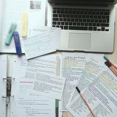 Izzy's Studyblr