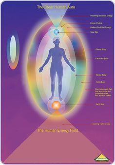 The Clear Human Aura