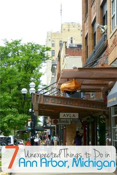 7 Amazing Experiences to Have in Ann Arbor, Michigan