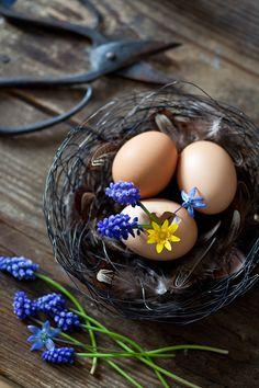 egg vase in nest...
