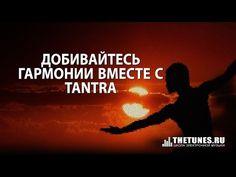 awesome Добивайтесь гармонии вместе с Tantra VST Crack Free Download