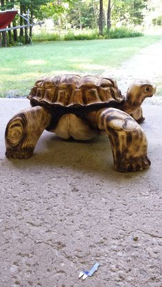 Chainsaw carved turtle                                                       …