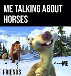 Me talking about horses - Horses Funny - Funny Horse Meme - - Me talking about horses The post Me talking about horses appeared first on Gag Dad. Funny Horse Memes, Funny Horse Pictures, Funny Animal Jokes, Funny Friend Memes, New Funny Memes, Funny Horses, Funny Memes About Girls, Cute Horses, Pretty Horses