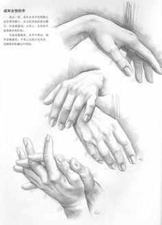 Hand postures for pencil drawing practice Pencil Art Drawings, Art Drawings Sketches, Realistic Drawings, Hand Pencil Drawing, Drawing Practice, Life Drawing, Painting & Drawing, Anatomy Sketches, Body Sketches