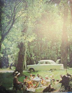 Picknick im Grünen ♥ stylefruits inspiration