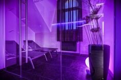 Hotel a wellness Spa Theresian - EuroWellness - www.spa-virivky.cz