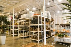 30 Best Ldf Silk Showroom In The Dallas Design District Images