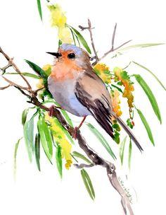 European Robin on the Tree, Spring, original watercolor painting Watercolor Beginner, Watercolor Bird, Watercolor Paintings, Watercolor Landscape, Robin Vogel, Robin Bird, Guache, Bird Drawings, Vintage Birds