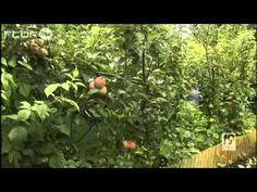 Jardin des Fraternités Ouvrières : Visite de la RTBF - Jardin forêt comestible mise en place depuis 40 ans avec les méthodes de la permaculture, jardin spectaculaire à visiter absolument si vous en avez l'occasion!