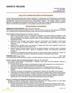 Grad School Resume Objective Enchanting Resume Summary Examples Graduate  Free Tamplate  Pinterest .
