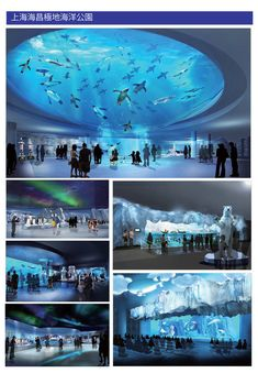 Aquarium Architecture, Zoo Architecture, Zoo Decor, Happy Zoo, Nausicaa, Interactive Exhibition, Eco City, Architecture Presentation Board, Fantasy Art Landscapes