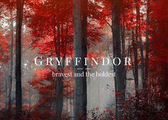 Hogwart's House Forest Aesthetics:  Gryffindor - bravest and the boldest