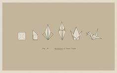 Evolution of Paper Crane  by Aaron Thong
