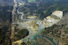 Sheer scale: The massive mudslide that killed at least 14 people on Saturday and left 176 missing is shown in this aerial photo taken on Monday...Snohomish County 55 miles north of Seattle, Washington state