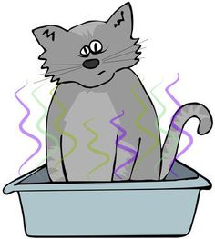 Is it possible to get rid of the smell from a cat litter box without tucking it away in the basement? Cat litter box odor appears to be one of most common reasons that people choose not to have a cat. We have three cats ourselves, and their litter box rarely smells. How do we do it? Here's how: